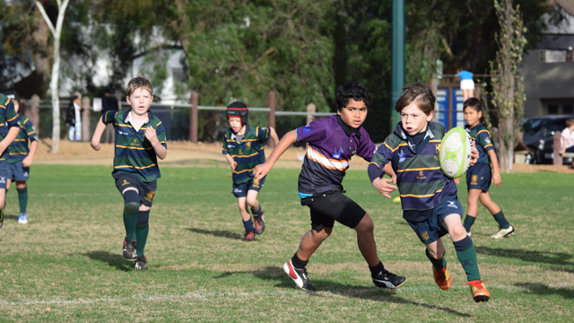 Melbourne Rugby Union Under 8